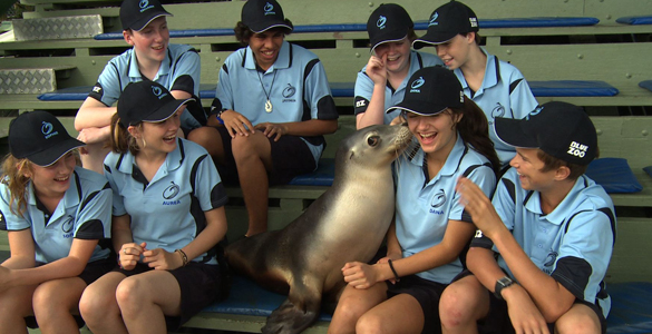 Sealed with a kiss: A group of Irish and Australian teenagers get acquainted with a seal at a marine park in Coffs Harbour. The group are taking part in Blue Zoo, a new documentary co-production by RTÉ and ABC3.